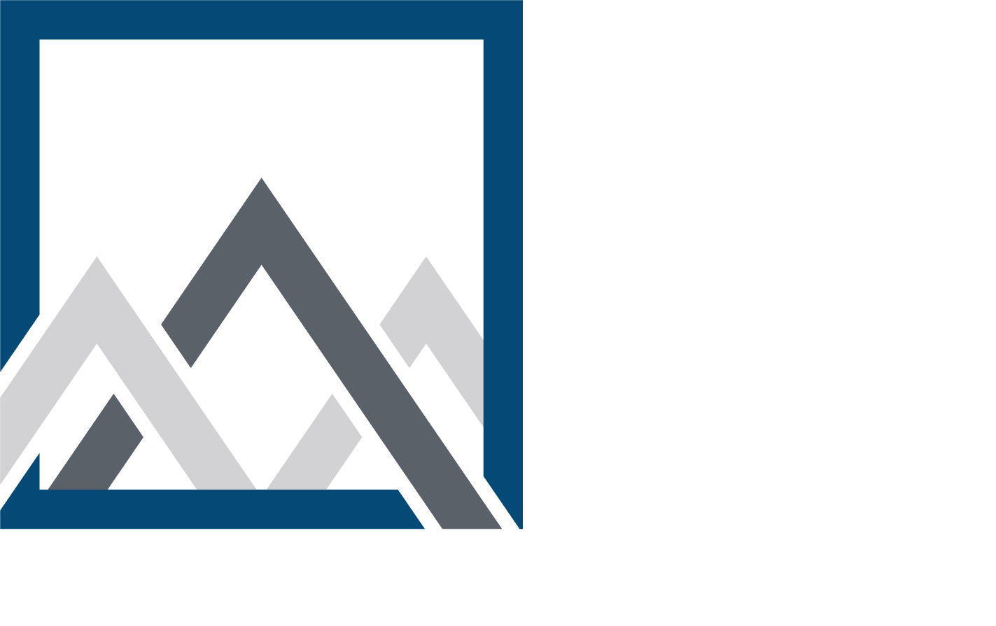 Mountain Secure Systems Logo